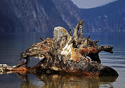 Sur le lac du konigsee