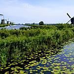 Moulins de Kinderdijk, au Pays-Bas