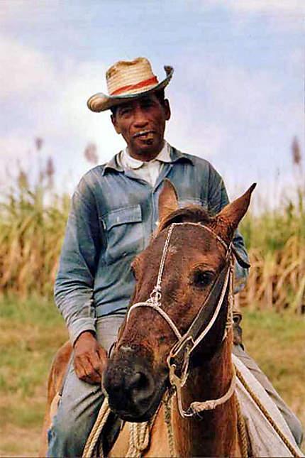 Cavalier agriculteur