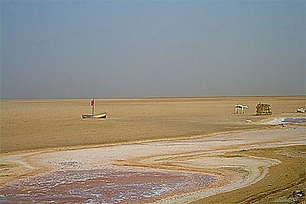 Chott el Djerid - rivière de sel