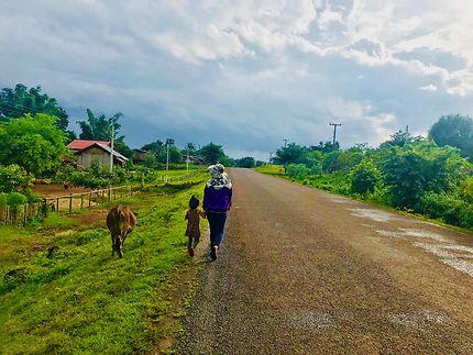 Promenade d'une mère, sa fille et une vache