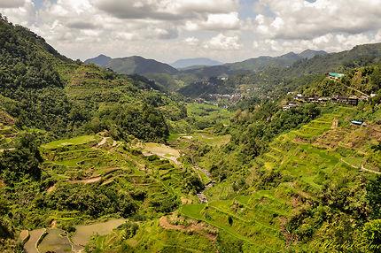 Rizières du pays Ufugao BANAUE Philippines