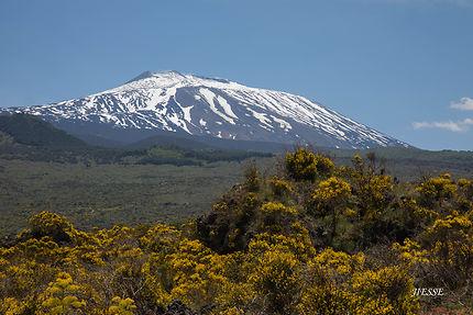 L'Etna au printemps
