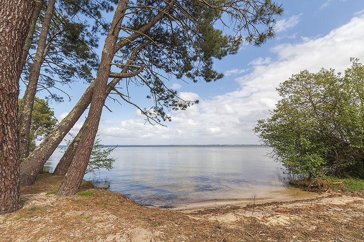 Biscarrosse, région des grands lacs landais