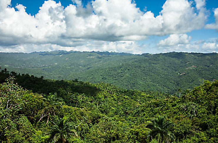 Sierra Maestra : la montagne des rebelles