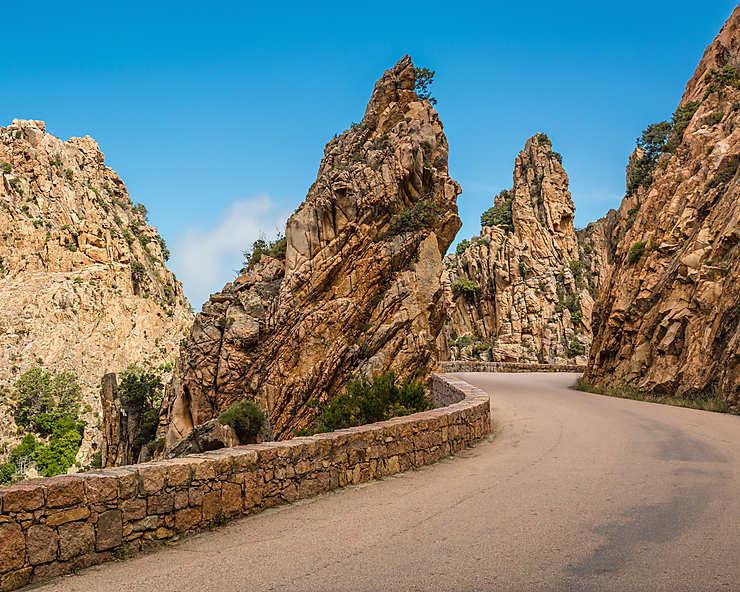 Route D81 (Corse)