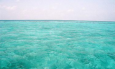 Blue Hole (Lighthouse Reef)