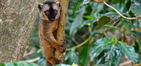 Retour de 3 semaines à Mayotte