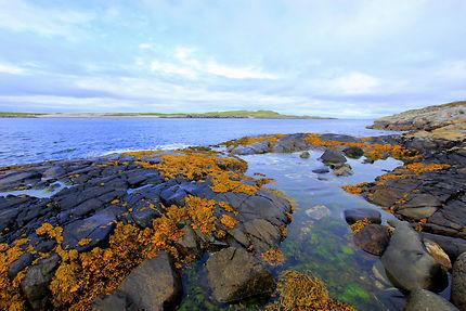 Entre terre et mer écossaise