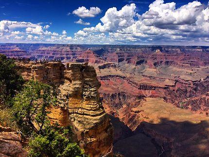 Grande vue pour un Grand Canyon