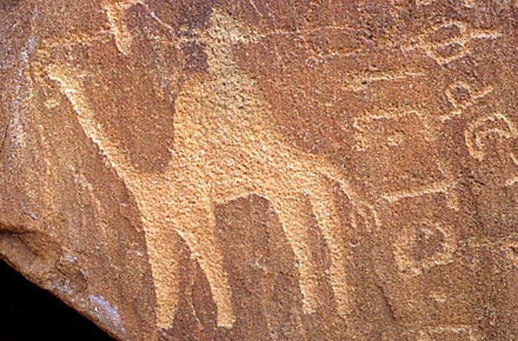 Pétra, un empire au cœur du désert