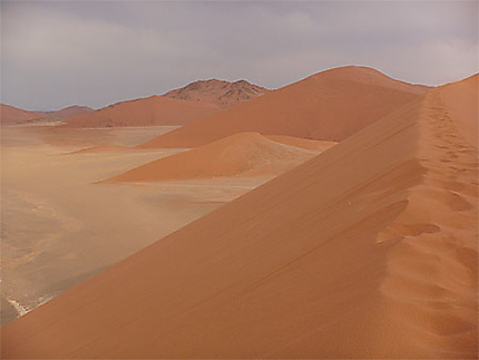 Vue depuis la Dune 45