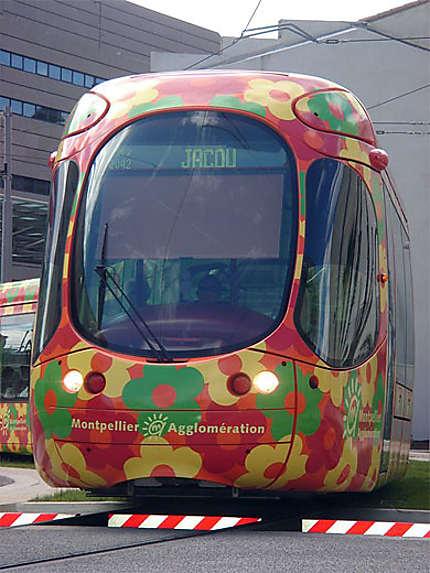 Tramway à Montpellier