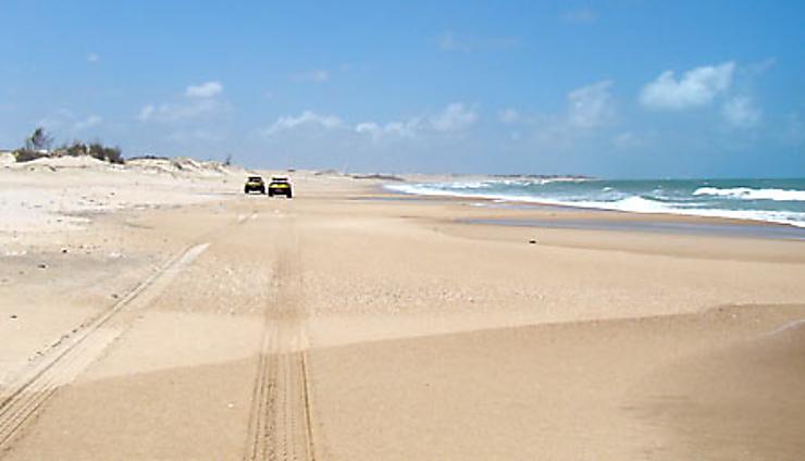 En buggy, sur les plus grandes plages du Brésil