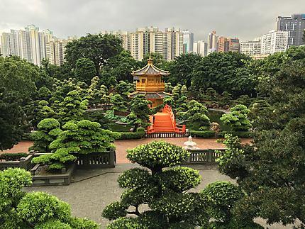 Nan Lian Garden, Hong-Kong