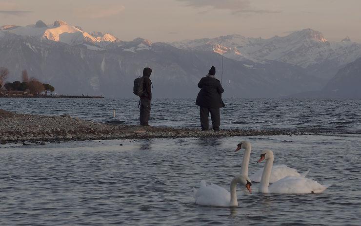 Vue lémanique à Lausanne, Suisse