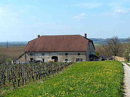 Domaine - Autour d'Arbois