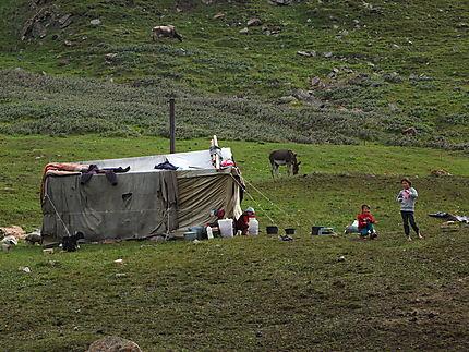 Campement sur un pâturage d'été