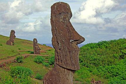 Les statues de Rano Raraku
