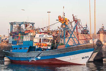 Un chalutier au port d'Essaouira