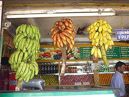 Les différentes bananes