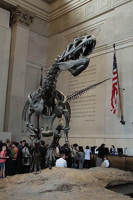Le dinosaure de l'Entrée