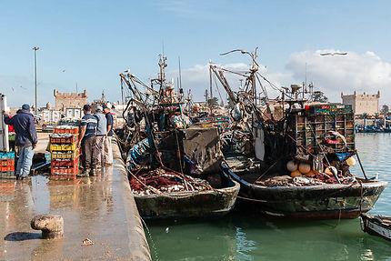 Caisses de poissons vendus au port d'Essaouira