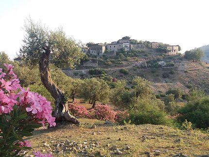 Qeparo, vieux village
