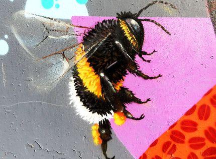 Les abeilles parisiennes