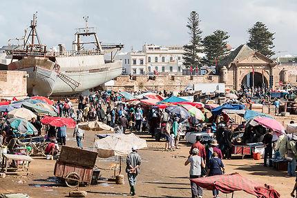 Le port très animé d'Essaouira