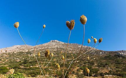 Randonnée à Amorgos