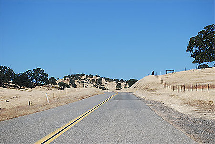 Dans la campagne californienne