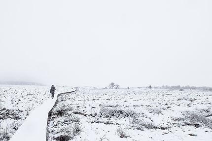 Solitude à Hautes-Fagnes en Belgique