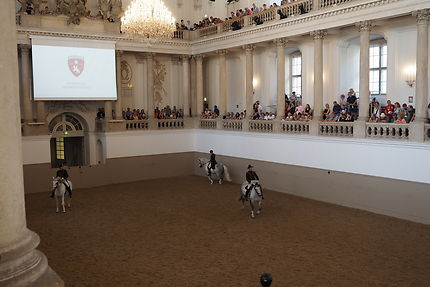 Ecole espagnole d'équitation