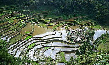 Sagada (Luzon)