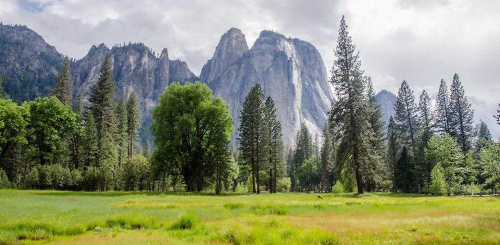 Yosemite National Park - un rêve pour les randonneurs