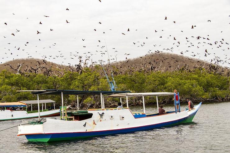 Riung et ses 17 îles au large de Florès