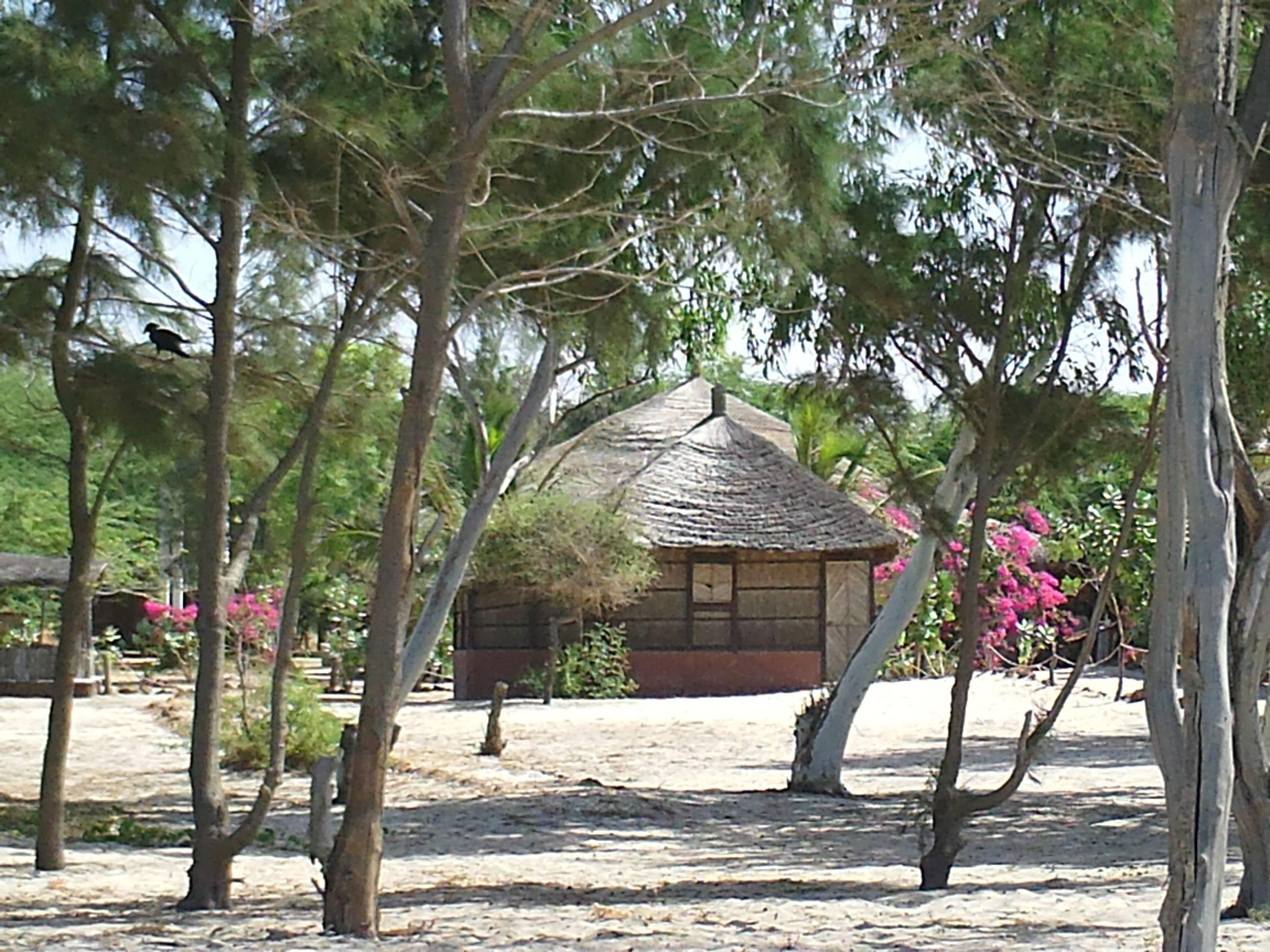 Siné Saloum - Sénégal