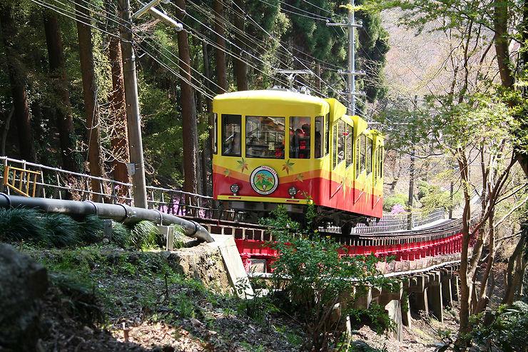 Jour 1 - De l'effervescence de Tokyo au sommet du Mt Takao