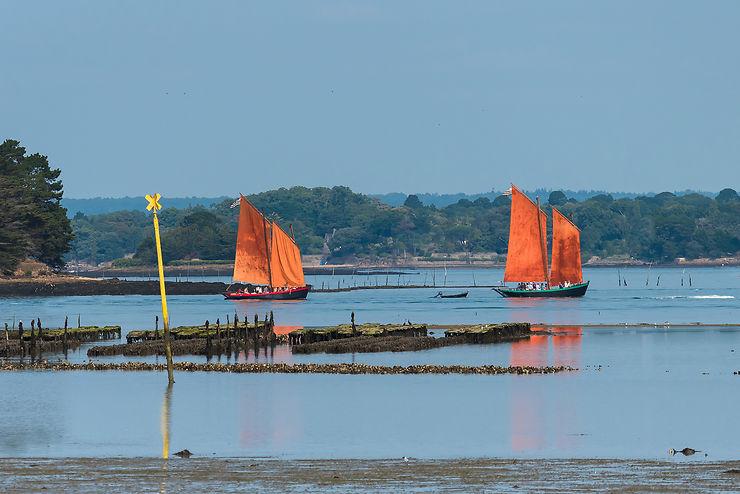 Le Morbihan, côté golfe et/ou côté terre