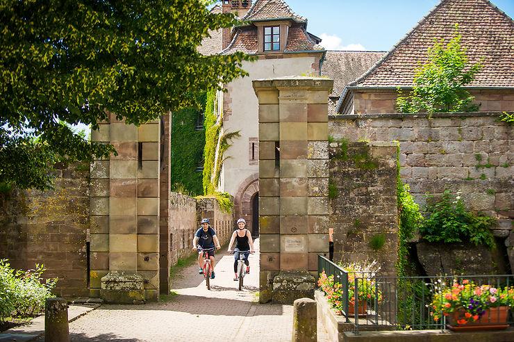 Alsace: à la découverte des cités fortifiées et du vignoble