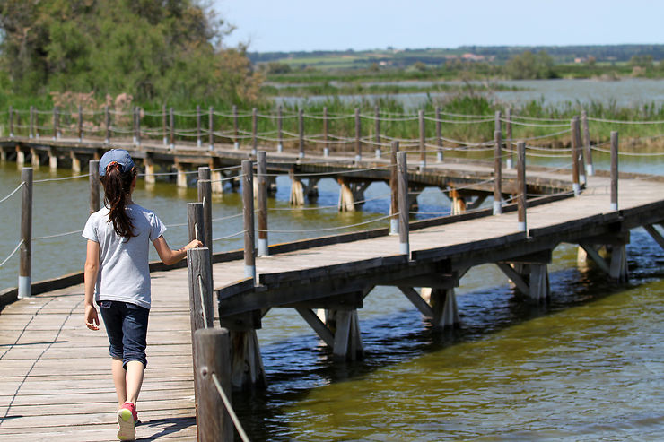 Balade jusqu'à Saint-Gilles par la route des étangs