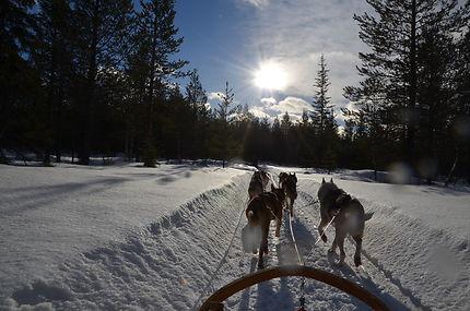 Balade en traîneau à Äkäslompolo