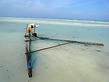 Pêche à Bohol