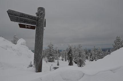 Randonnée aux alentours d'Äkäslompolo