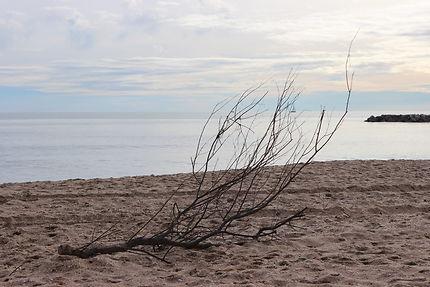 La plage de Palavas les flots en hiver