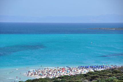 Spiaggia la Pelosa - Capo Falcone