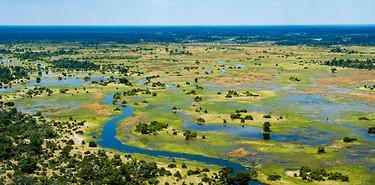 Safari au Botswana : Delta de l