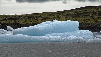 Balade autour des icebergs