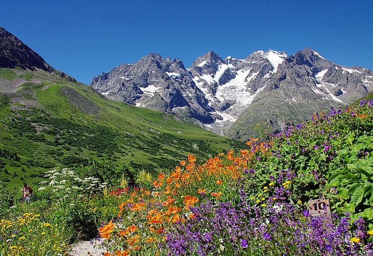 Parc national des Écrins (Hautes-Alpes, Isère)